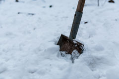 Old tired rusty garden shovel scoop in my backyard have relax in snow on the winter time. Royalty Free Stock Photography