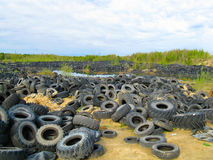 Old tires. Picture of a lot of old tires outdoors Royalty Free Stock Photos