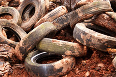 Old Tires Stock Image