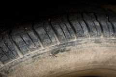 Old tires. Old black tires of car wheel Royalty Free Stock Photography