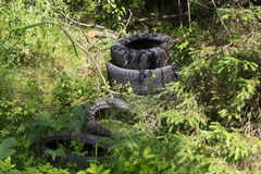Old tires garbage in the forest Royalty Free Stock Photo