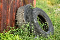 Old tires in green grass Royalty Free Stock Photo