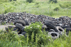 Old tires in the nature. Pile of old tires in the nature Royalty Free Stock Photography