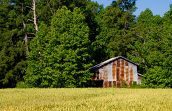 Old tobacco barn on farm Stock Photography