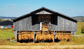 Old Tobacco Barn. A old, stocked tobacco barn located in south-central Kentucky Royalty Free Stock Photos