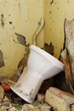 Old toilet bowl Stock Images