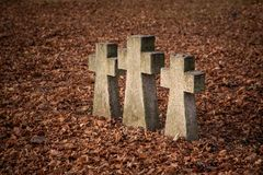 Old tomb crosses. Three tomb crosses at cemetery on autumn with dry leaves royalty free stock image