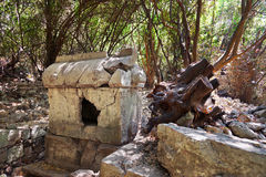 Old tomb at Olympos in Turkey Stock Photography