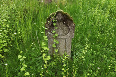 Old tombstone at an abandoned cemetery. Royalty Free Stock Photo