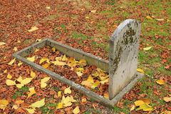 Old tombstone and autumn leaves. Old tombstone in a graveyard covered with red autumn leaves Royalty Free Stock Image