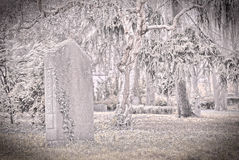 Old  tombstone in a garden Royalty Free Stock Image