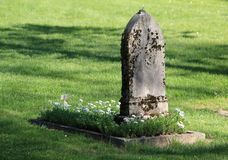 Old tombstone and green grass Stock Images