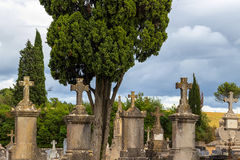 Old tombstones at antique european cemetery. Carcassonne, France Royalty Free Stock Image