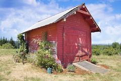 Old Tool Shed Red Barn. With Rusty Bicycle and  Watering Can Landscape Display at Farm Royalty Free Stock Photo