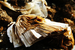 Old torn book Royalty Free Stock Images