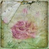 Old torn crumpled paper  with hand drawn rose Stock Images