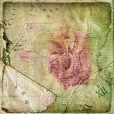 Old torn crumpled paper  with hand drawn rose Stock Photo