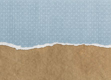Old torn paper texture Royalty Free Stock Image