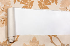 Old torn wallpaper on white background Royalty Free Stock Photography