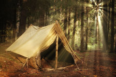 Old tourist tent  in the forest Royalty Free Stock Photo
