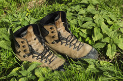 Old touristic shoes among nettle. Selective focus Stock Image