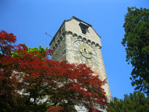 Old tower. Royalty Free Stock Photo