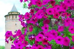 Old tower named Marinkina. Kremlin in Kolomna, Russia. Stock Photos