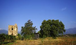 Old tower and ruins   in corsica farmland. Old tower in farmland of corsica island Stock Photo
