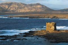 Old tower seaside. In sardinia, Italy royalty free stock photo