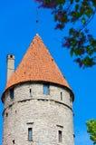 Old tower. Tallinn, Estonia Stock Images