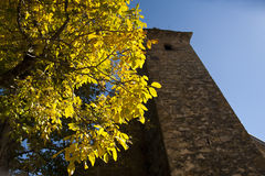 Old tower. View of an old tower and tree with yellow foliage stock images