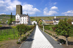 Old Tower with vineyards. Landscape, Old Tower with vineyards stock image