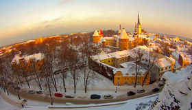 Old town, Estonia Tallinn Royalty Free Stock Photography