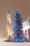 Old town of Gdansk with Christmas tree Royalty Free Stock Images