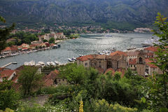Old town of Kotor Stock Images