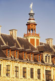 Old town lille Royalty Free Stock Images