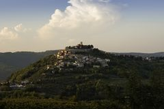 Old town of Motovun in Istria rises up on hill in late summer sunset with vineyards in foreground stock images