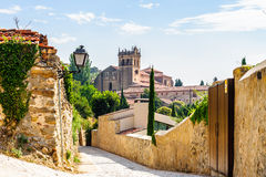 Old Town of Segovia and its Aqueduct. UNESCO World Heritageouple of the KIng penguins. Stock Images