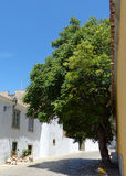 Old town street, Faro, Portugal Royalty Free Stock Image