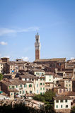 Old Town with tall Tower. In Italy (Sienna royalty free stock image