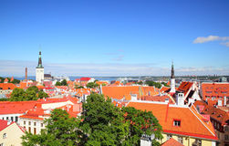 Old town of Tallin Stock Photography