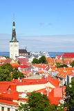Old town of Tallin Royalty Free Stock Image