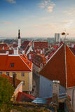 The old town, Tallinn Royalty Free Stock Photography