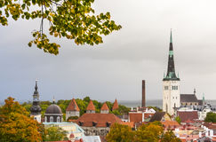 The Old Town of Tallinn in autumn colors Royalty Free Stock Photography