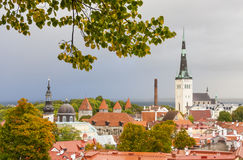 The Old Town of Tallinn in autumn colors Stock Images