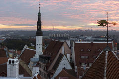 Old Town in Tallinn at dawn Stock Image