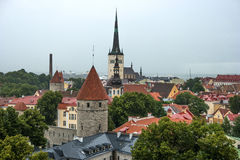 Old Town of Tallinn in Estonia. It's raining. Royalty Free Stock Images