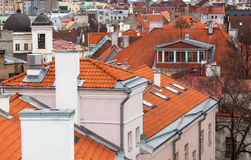Old town of Tallinn, houses with red tiled roofs Stock Image