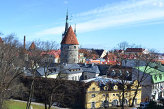 Old Town in Tallinn. Stock Images