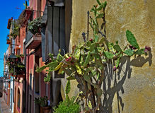 Old town of Tarragona, Spain Royalty Free Stock Images